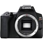 Canon EOS Rebel SL3/250D DSLR Camera (Black, Body Only)