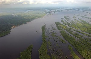 Fotografía de archivo de la Amazonía brasileña. EFE/Archivo