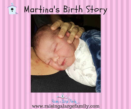Martina's Birth Story - Raising a Large Family