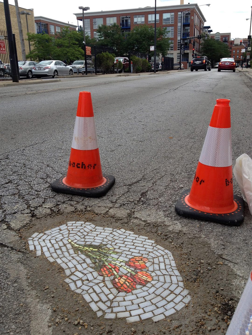 http://www.thisiscolossal.com/2014/10/guerilla-mosaic-artist-now-filling-chicago-potholes-with-flowers/