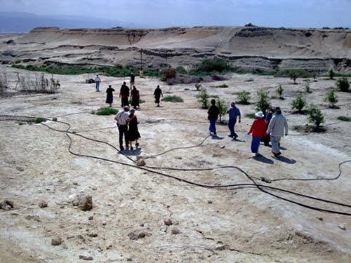 הליכה במדבר