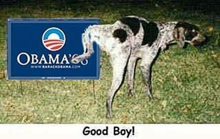 dog & sign
