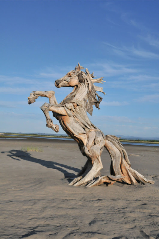 Remarkable Driftwood Animal Sculptures by Jeffro Uitto