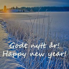 Godt nytt år! / Happy new year!