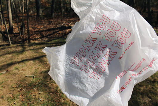 FERN's Friday Feed: Preserving the symbolism of the 'thank-you' plastic bag | Food and Environment Reporting Network
