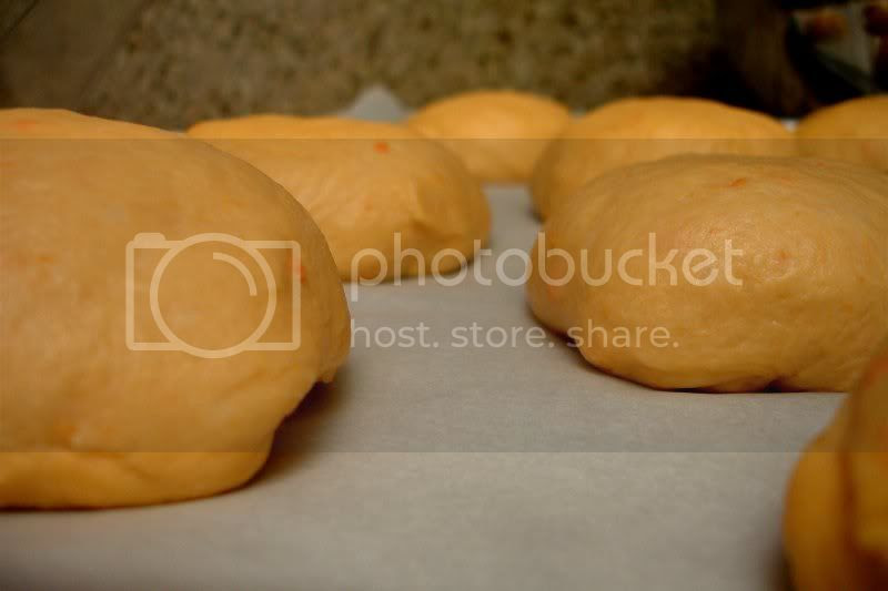 Sweet Potato Buttermilk Roll Dough