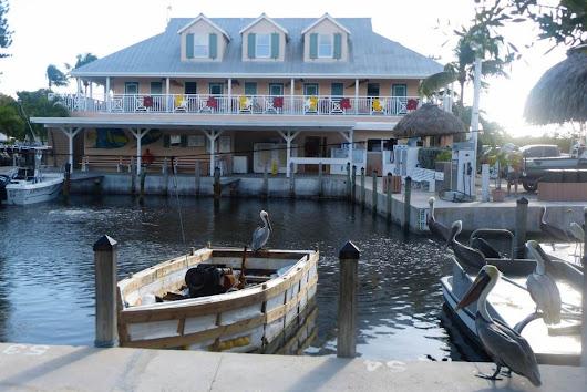 Big pine key fishing lodge google for Big pine fishing lodge