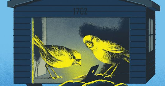 Startups Are the New Canary in the Coal Mine for Big Brands and Marketers