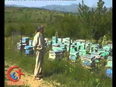 Bozkır Bağyurdu Köyünde Arıcılık - Arıcı Muhtar Zekeriya Aktaş