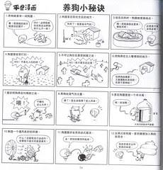 Pington - Tips for raring dog