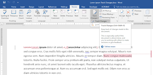 Using Track Changes in Microsoft Word for Editing and Review | OXEN Technology