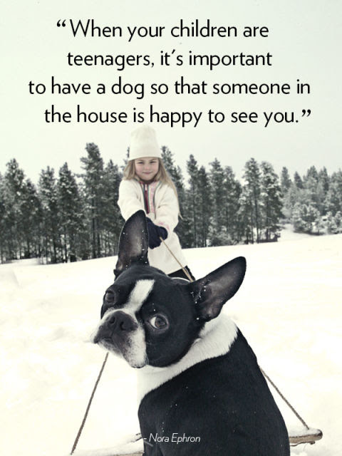 """When your children are teenagers, it's important to have a dog so that someone in the house is happy to see you."" —Nora Ephron"