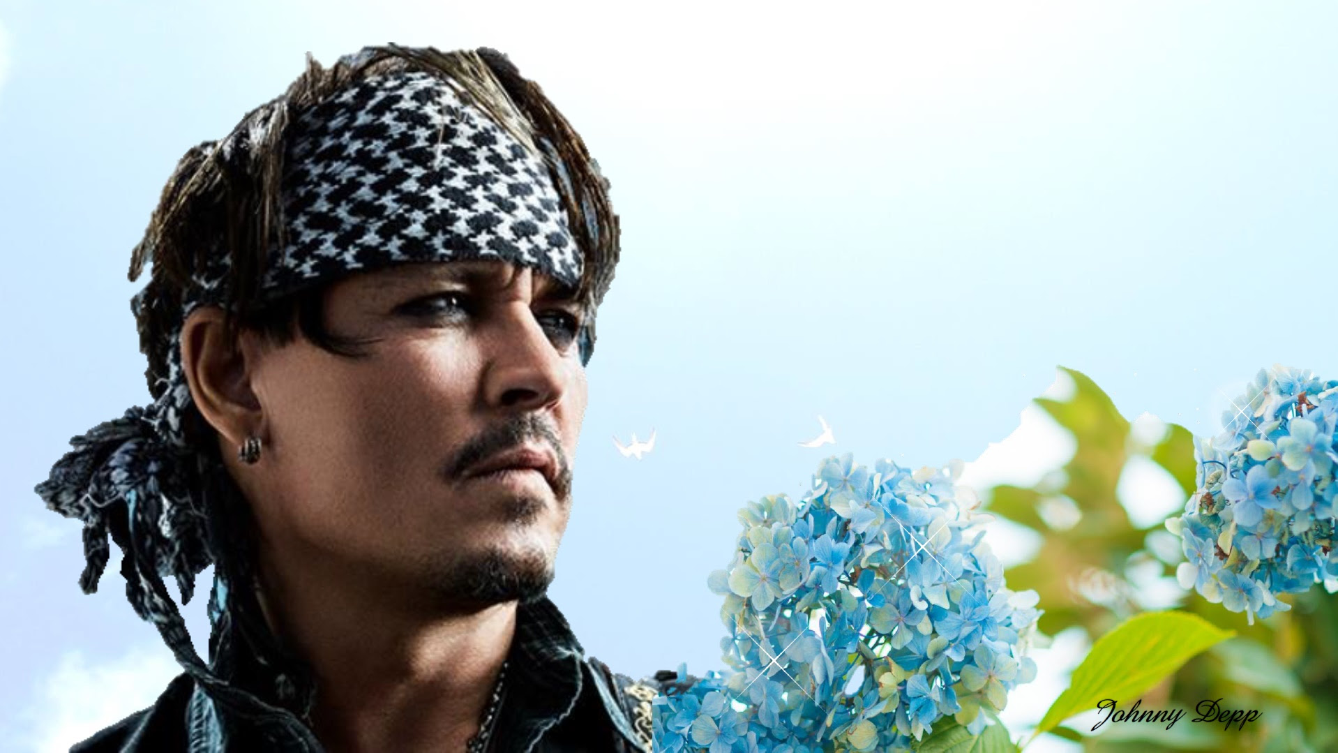 ジョニー デップ壁紙 ジョニーに逢えたなら ジョニー デップ応援サイト