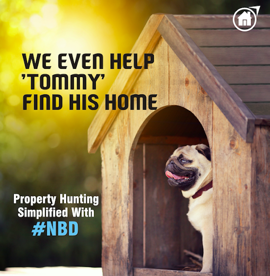 Property Hunting Simplified With #NBD