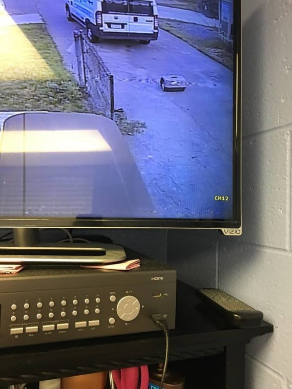 A security camera at a Michigan animal shelter captured a tiny cat crate being dropped off in the driveway at 9 p.m. The staff showed up and saw the footage about 12 hours later.