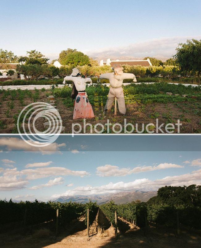http://i892.photobucket.com/albums/ac125/lovemademedoit/welovepictures%20blog/056_BABYLONSTOREN.jpg?t=1359653624