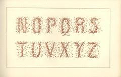 artiste peintre de lettres 9