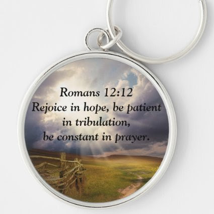 Meadow, Fence, Sunshine and Bible Verse Keychain