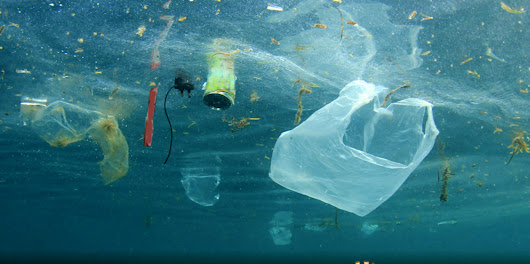 Stop single-use plastic pollution now!