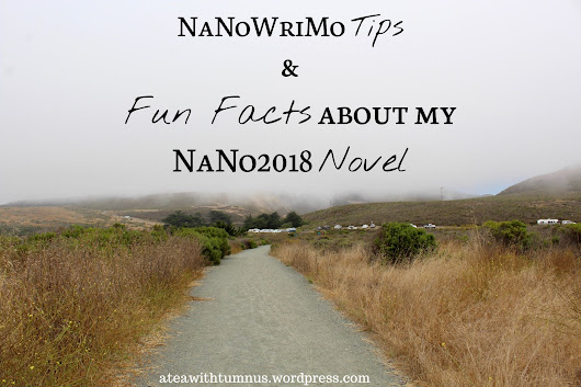 NaNoWriMo Tips + Fun Facts about my NaNo2018 Novel