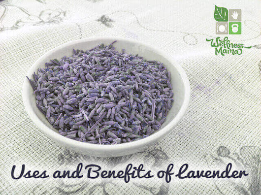How to Use Lavender for Health | Wellness Mama