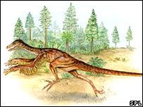 தோலின் புறத்தே அமைந்த செதில்கள் அல்லது இறகுகளால் மூடப்பட்ட நிலையில் தசைப்பிடிப்பான (சுறாக்களின் தடித்த தோலால் ஆக்கப்பட்ட துடுப்புக்கள் போன்ற அமைப்பு) அமைப்புக்களுடன் கூடிய தாவர உண்ணி டைனோசோர்களின் (Psittacosaurus) சுவட்டு நிலை மீதிகள் சீனாவில் கண்டறியப்பட்டுள்ளன. அவ்வாறு கண்டறியப்பட்ட Psittacosaurus களின் மாதிரி உருவையே படத்தில் காண்கிறீர்கள்.