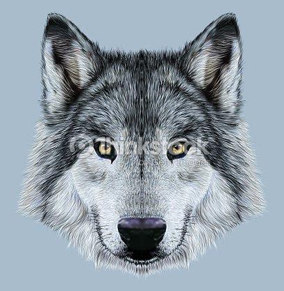イラストオオカミのポートレート ストックイラストレーション Thinkstock