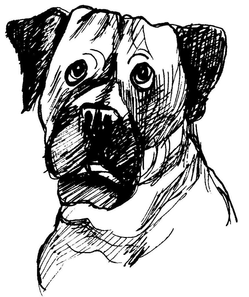 Dessin coloriage animal tete de chien triste