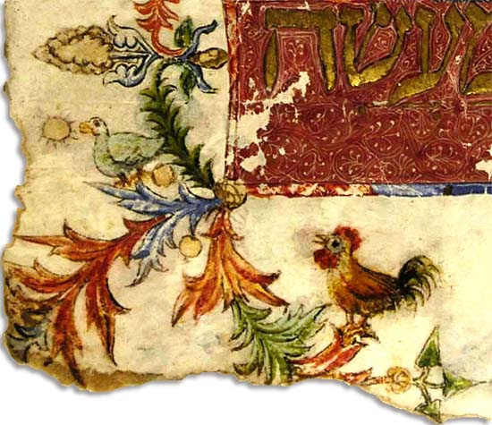 Rooster in the Kaufmann Haggadah