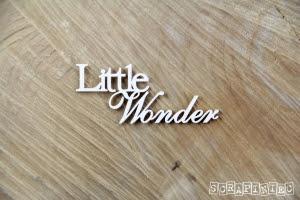 Little wonder.jpg