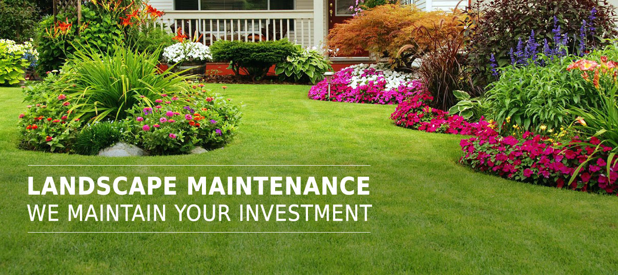 HomeAbsolute Landscaping