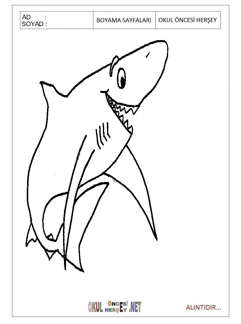 Boyama Köpek Balığı