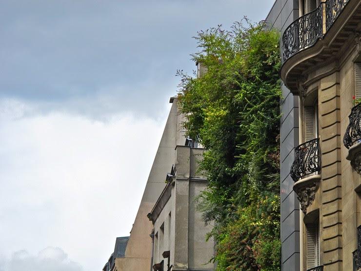 BHV Homme vertical garden