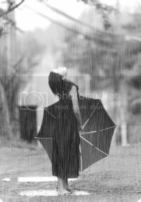 raining Pictures, Images and Photos