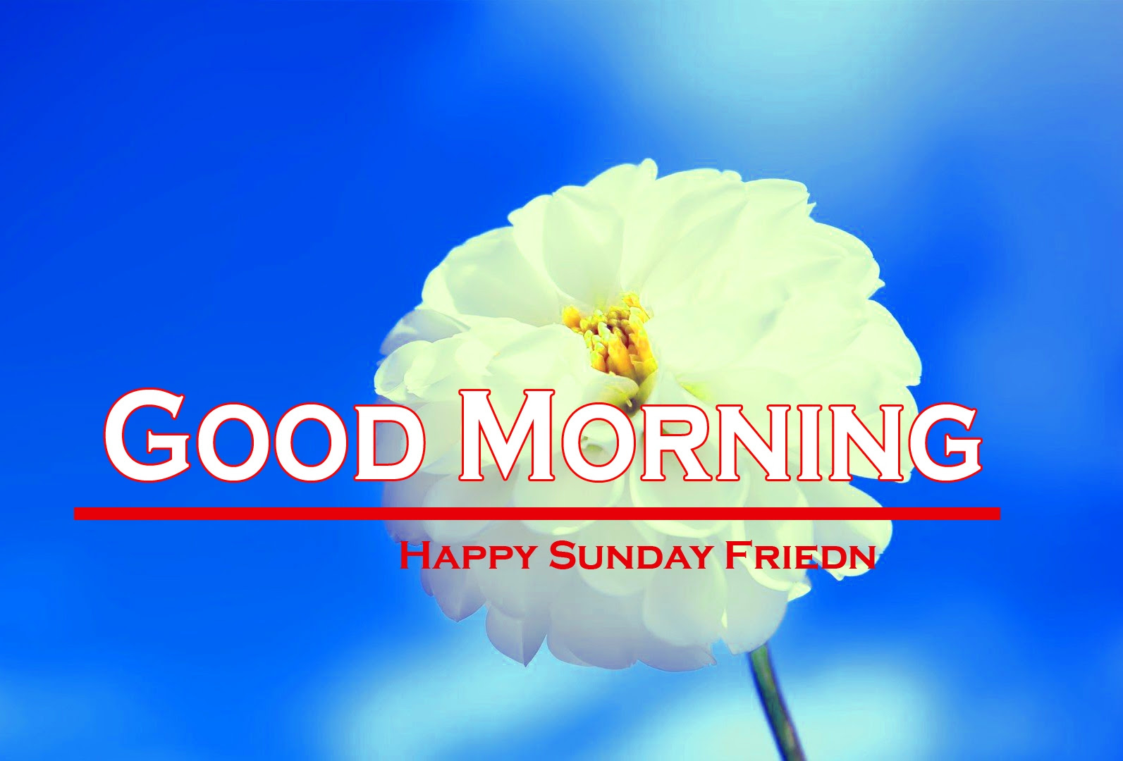 Sunday Good Morning Images 2 1