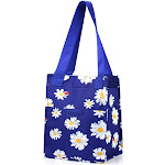 Zodaca Women Insulated Lunch Bag Cooler Picnic Travel Food Box Tote Zipper Carry Bags, Size: Large, Blue