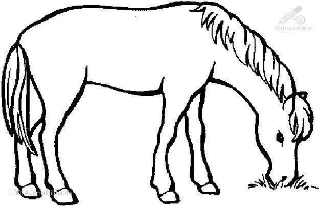 Ausmalbilder Ausdrucken Pferde