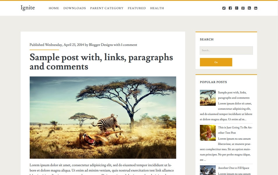 Ignite Responsive Photography Blogger template