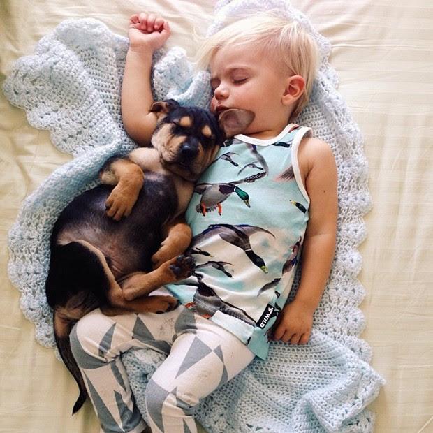 Beau Shyba e cachorro Theo viraram sensação na web ao tirarem 'sonecas inseparáveis' (Foto: Reprodução/Facebook/Momma's Gone City)