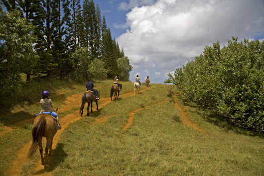 Horseback Riding in the Smokys - Blog White Oak Lodge & Resort