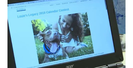 Submissions Being Accepted for Pet Calendar Fundraising Contest
