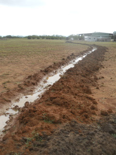 Second Swale Trench After Rain