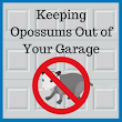 How to Get Opossums Out of Your Garage Before Winter - Blue Sky Builders