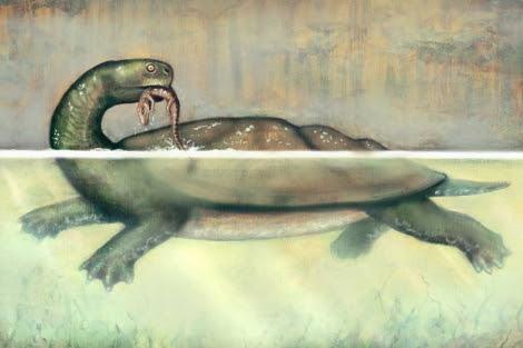 Recreación de 'Carbonemys cofrinii' devorando un pequeño cocodrilo. |Liz Bradford.