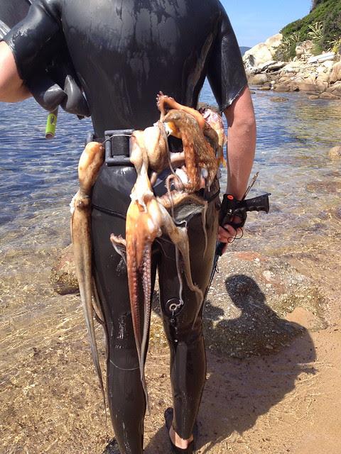 prima pescata