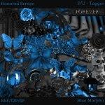 Blue Morpho - Tagger