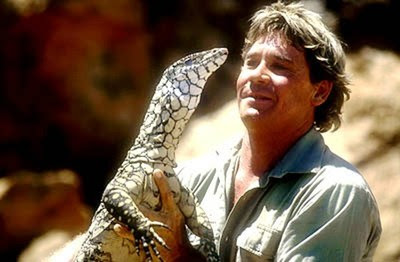 crocodile hunter d