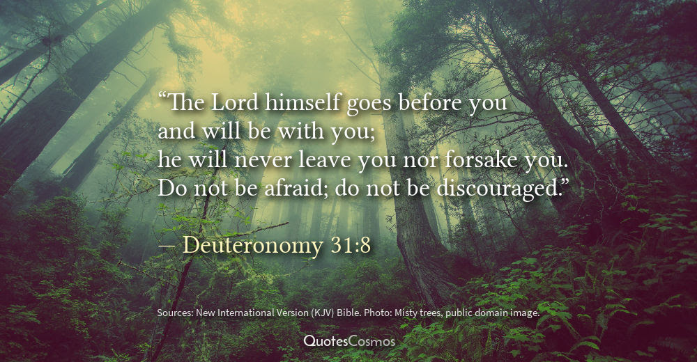 Deuteronomy 318 He Will Never Leave You Nor Forsake You