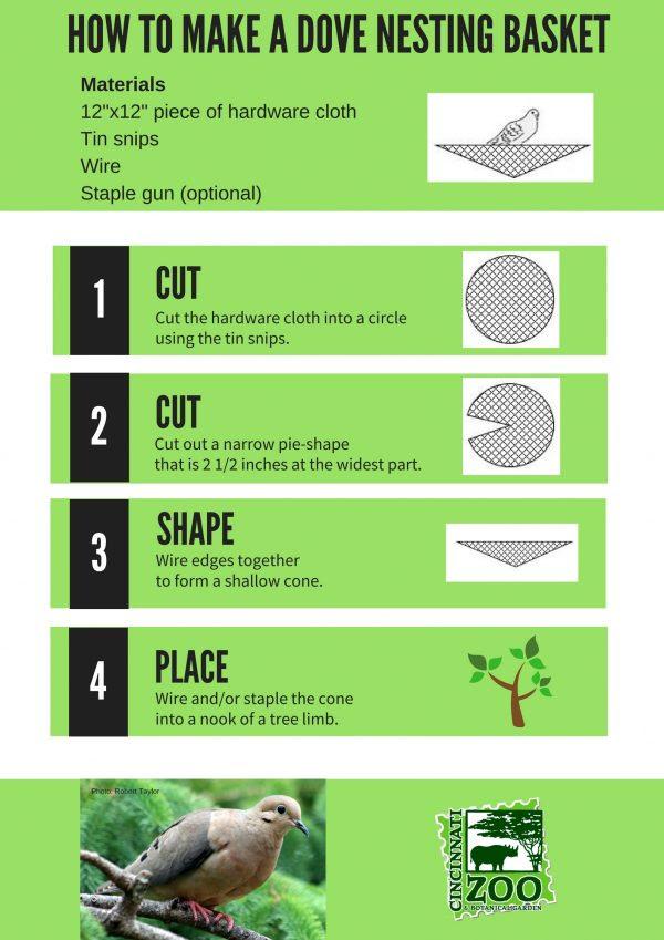 Create a Shelter Cincinnati Zoo & Botanical Garden