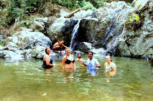 Full-Day Waterfall and Medicinal Trail Tour | The Fiji Bula Bible
